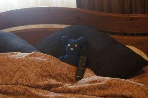 Blue Bear tucked up in Bed.